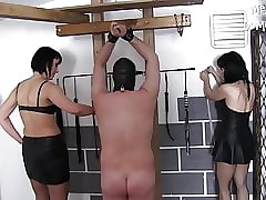 Fast Needling be beneficial to Yoke Slaves - Steely Chastisement