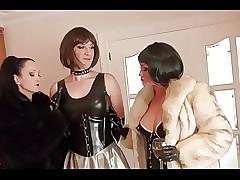 Transvestite Festivity